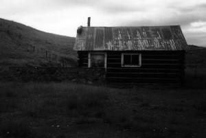 Greer Cabin 1