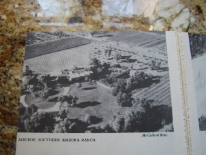 This aerial photo of Rancho shows the location of orchards and nurseries